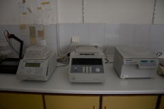 PCR thermocycler